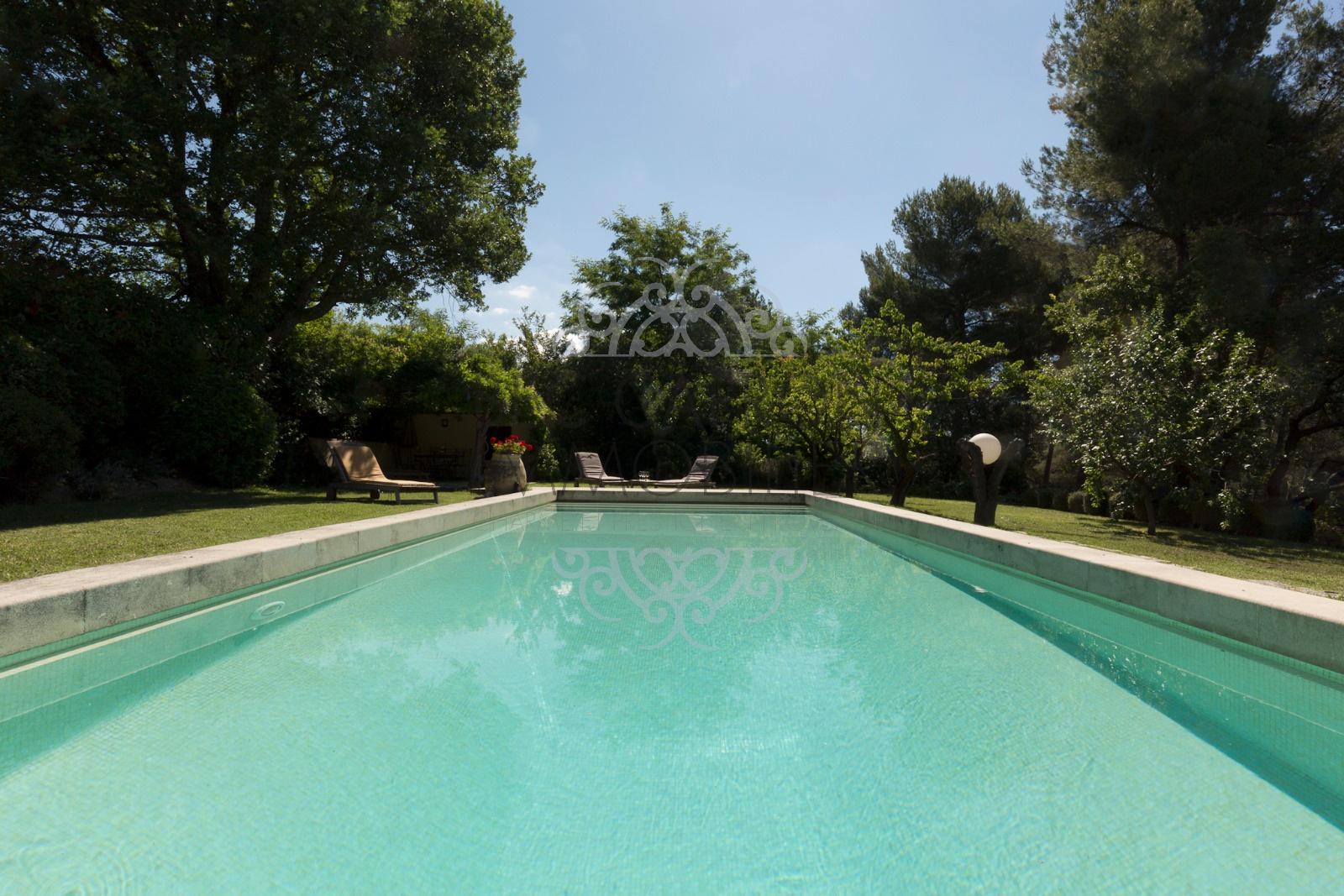 piscine bassin