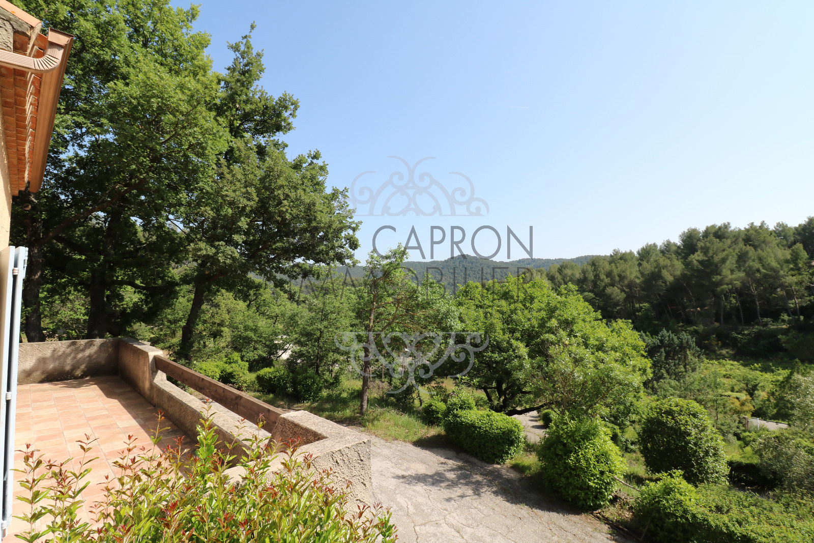 Vue terrasse et jardin de 4200m²