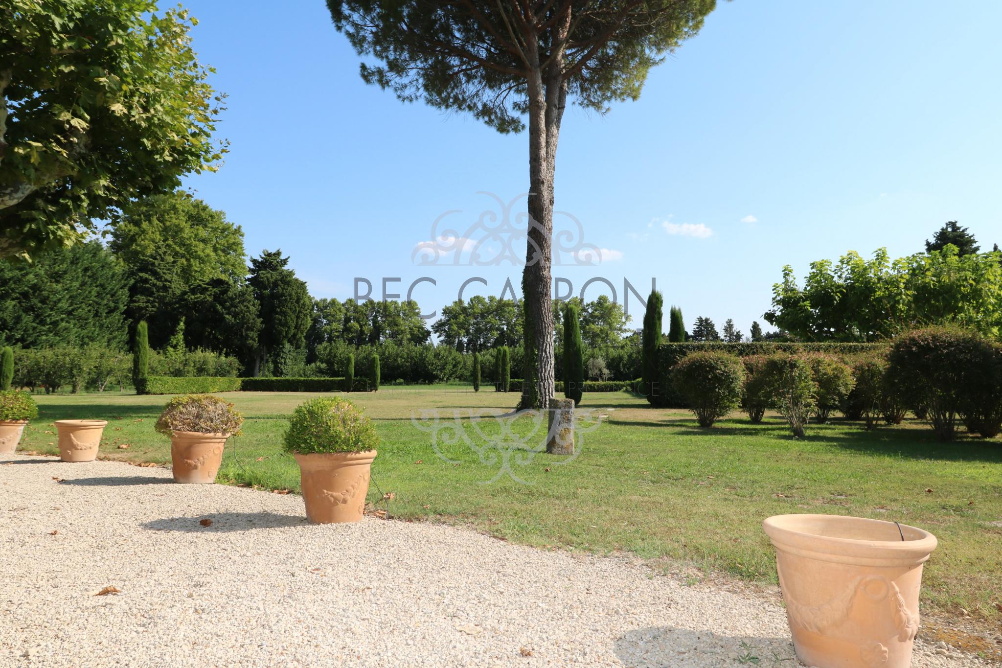 Espace jardin terrasse